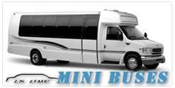 Saint Louis Mini Bus rental